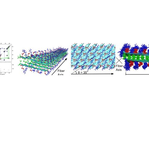 Nanofiber of RADA16